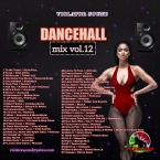 Dancehall Mix Vol.12