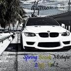 Spring Break Mixtape 2015  Vol.2