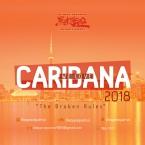 We Love Caribana 2018