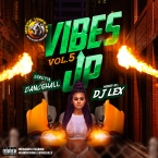 Vibes Up Vol 5: Strictly 2019 Dance Hall Sampler
