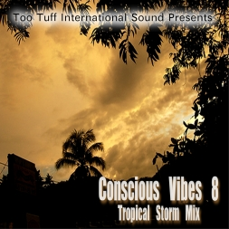 Conscious Vibes 5th Anniversary: Conscious Vibes 8 Re-Release