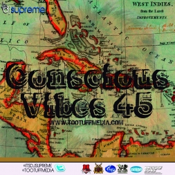 Conscious Vibes 45
