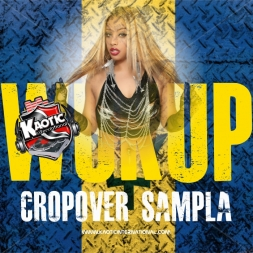 Cropover Sampla - Wukup Edition