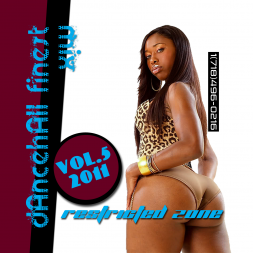 DANCEHALL FINEST MIX VOL.5 - 2011