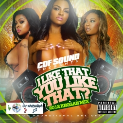 CDF SOUND I LIKE DAT YOU LIKE DAT DANCEHALL MIX 2012