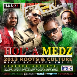 Hol A Medz 2013 Roots and Culture