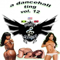 A Dancehall Ting Vol. 12