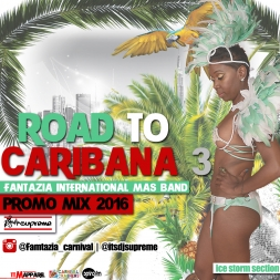 Road to Toronto Caribana 3