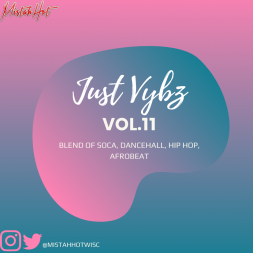 Just Vybz Vol.11