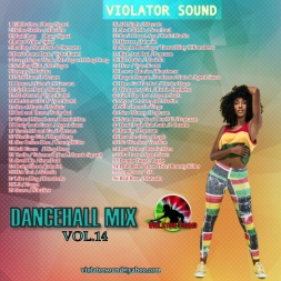 Dancehall Mix Vol.14