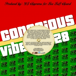 Conscious Vibes 28