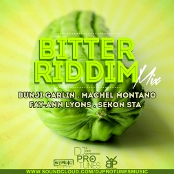 BITTER RIDDIM MIX 2015
