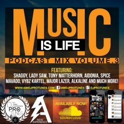 MUSIC IS LIFE VOLUME.3 FREESTLYE MIX (RAW)