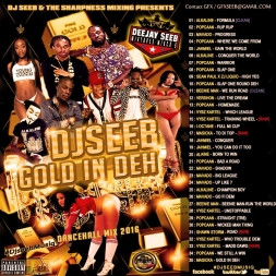 DJSEEB - GOLD IN DEH DANCEHALL MIX (2016)