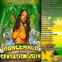 Dancehall Sensation 2014