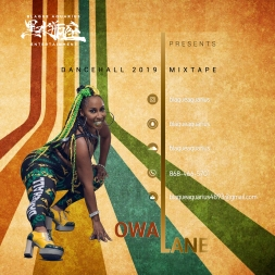 Owna Lane (The Dancehall 2019 Mixtape) (Clean)