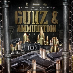 GUNZ & AMMUNITION Vol.2