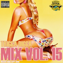 TRIGGA DIGGA MIX VOL 15