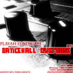 Dancehall Overdose 2k12  Year End Review