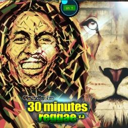 30 MINUTES OF REGGAE V.3