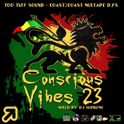 Conscious Vibes 23