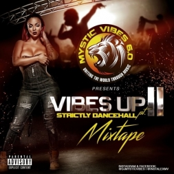 Vibes Up 2