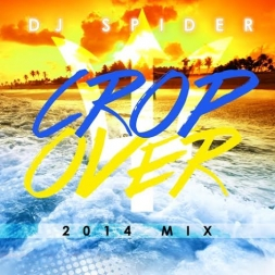 DJ SPIDER CROP OVER MIX 2014 (Crop Over 2014)