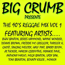 BIG CRUMB 90'S REGGAE MIX