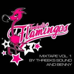 FANTASTIC FLAMINGOS MIX VOL. 1
