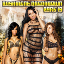 Bashment Breakdown Part 19