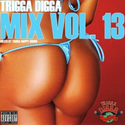 TRIGGA DIGGA MIX VOL 13