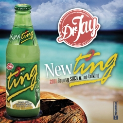 NEW TING 2014 Groovy Soca Mix
