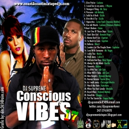 Conscious Vibes 17