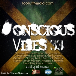 Conscious Vibes 33