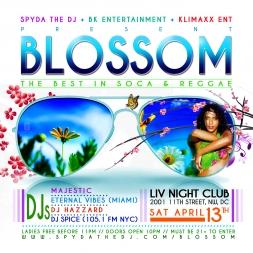 Blossom Promo Mix