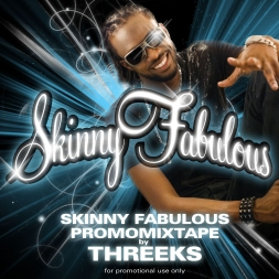 SKINNY FABULOUS PROMOMIX 2010