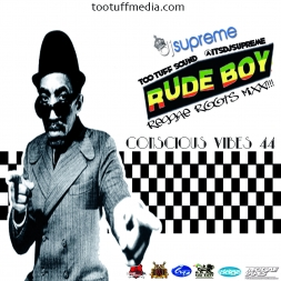 Conscious Vibes  44 Rude Boy Reggae Roots Mix