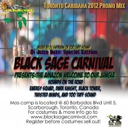 Di Juice Boxx: Toronto Caribana 2012 Blacksage Carnival Promo Mix