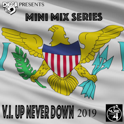 Vi Up Never Down 2019 (Mini Mix Series)